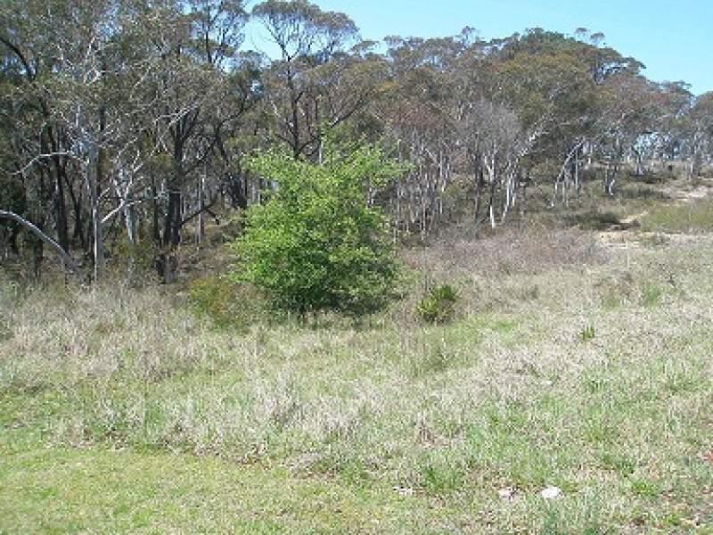 Lot 4 Castlereagh Highway, Capertee, NSW 2846