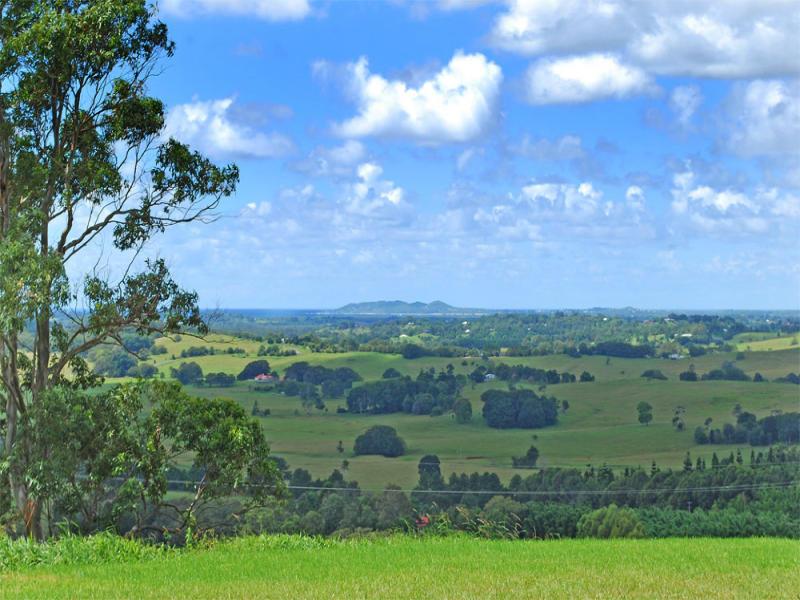 1250 Coolamon Scenic Dr, Montecollum, NSW 2482