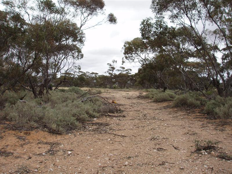 Lot 2 off Eggers Road COPEVILLE via, Walker Flat, SA 5238