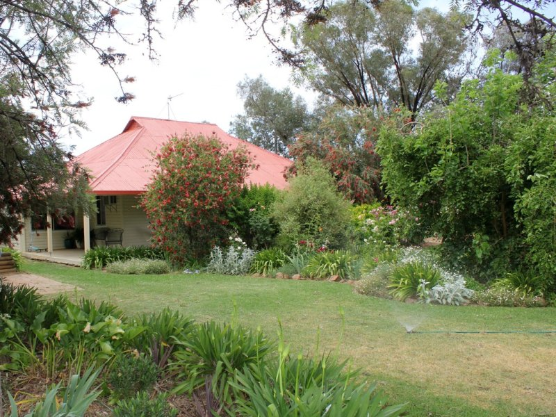 6604 Young Road, Temora, NSW 2666