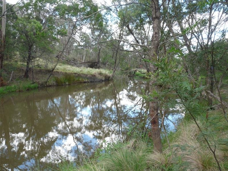 8170 Nerriga Rd, Tomboye, NSW 2622