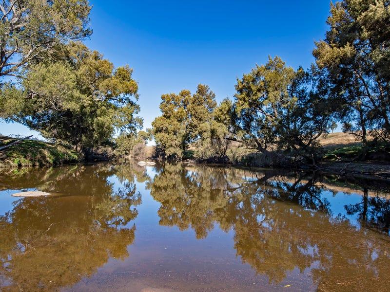 127 Surveyors Creek Road, Walcha, NSW 2354