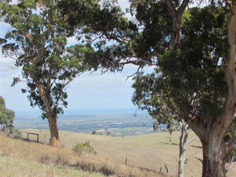 Lot 3 Toops Hill Road, McLaren Flat, SA 5171