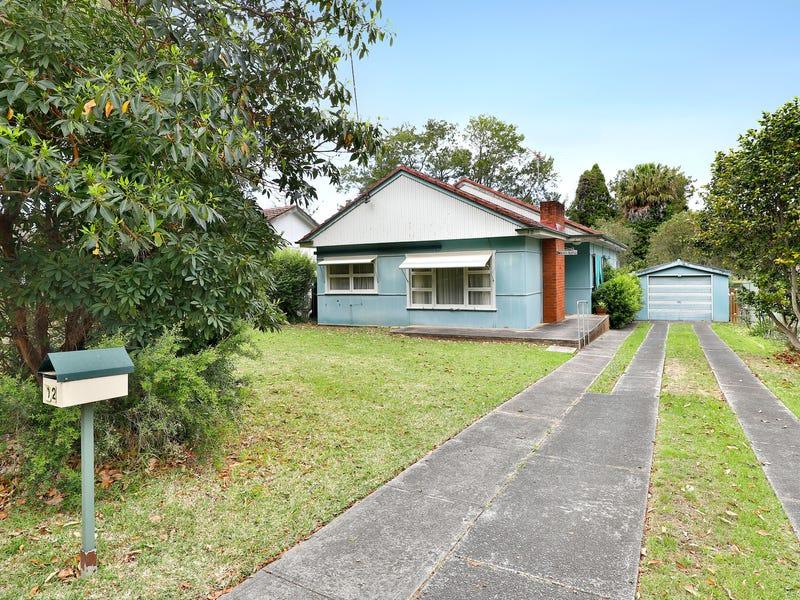 12 Wilga Road, Caringbah South, NSW 2229