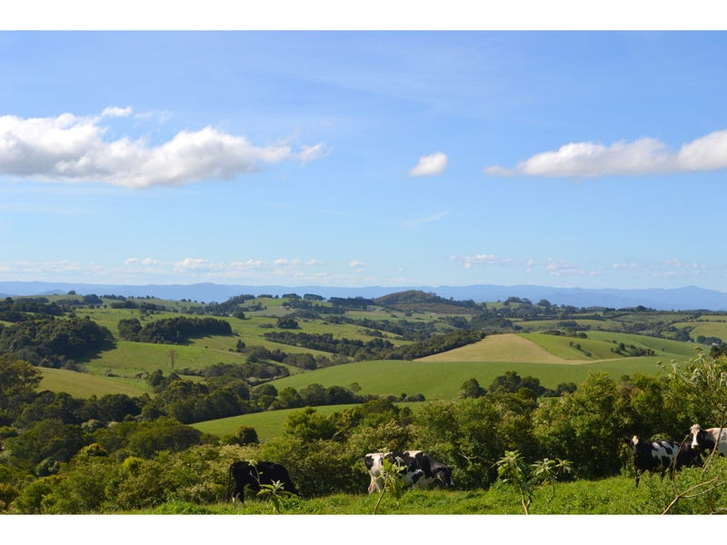 Address available on request, Comboyne, NSW 2429