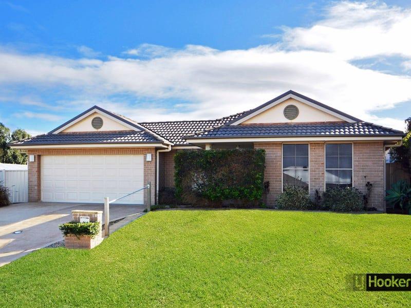 12 Stanley Close, Bolwarra Heights, NSW 2320