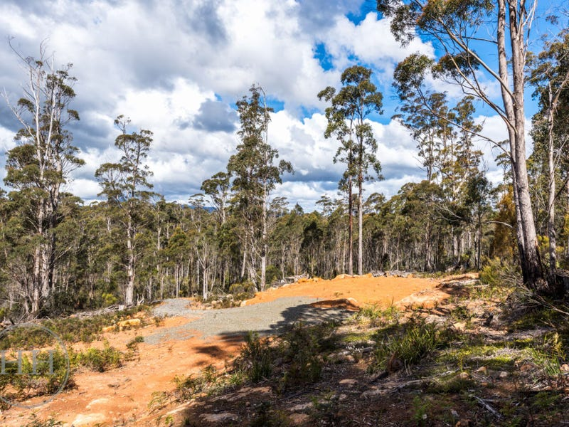 805 Prossers Road, Underwood, Tas 7268