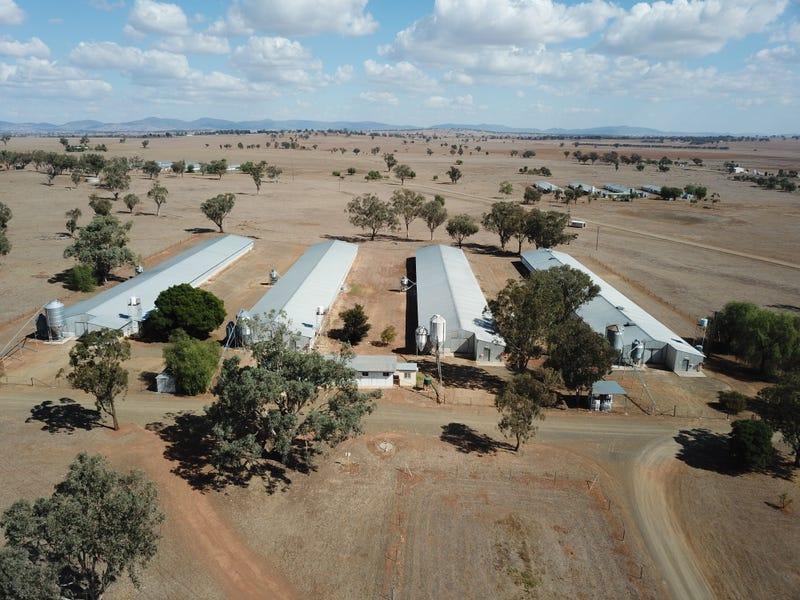 244 - 346 Gidley Siding Road, Tamworth, NSW 2340