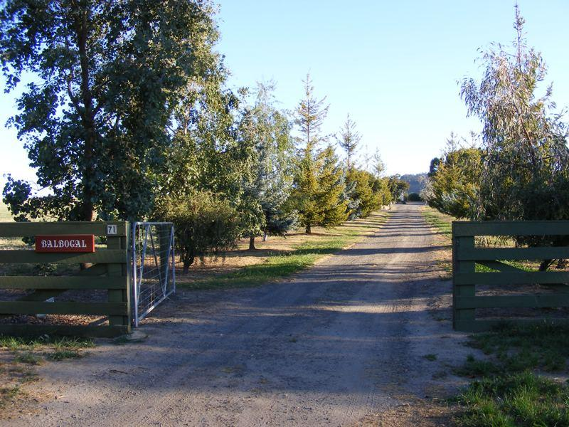 71 Creek Junction Rd, Kithbrook, Vic 3666