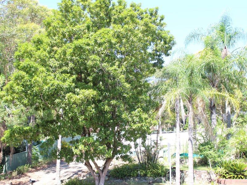 3 Galoola Drive, Nelson Bay