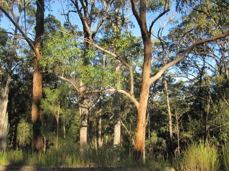 L1a Bruxner Hwy, Tabulam, NSW 2469