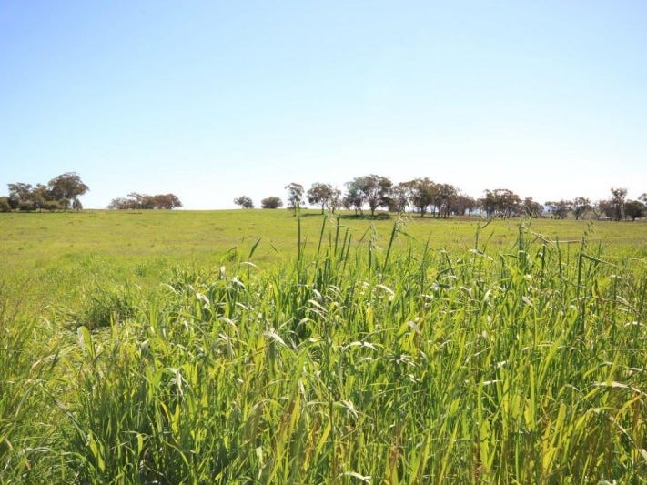 9, Hill View Estate, Gulgong, NSW 2852