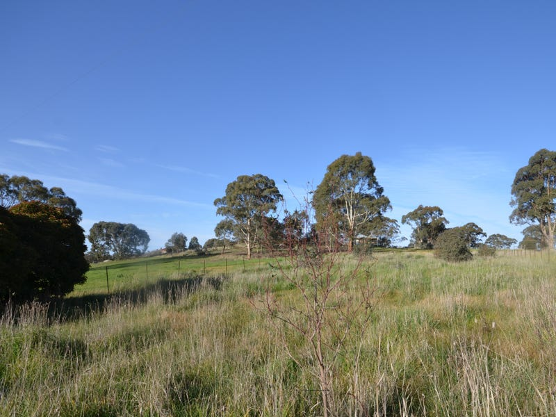 1381 McCallums Creek Road, Red Lion, Vic 3371