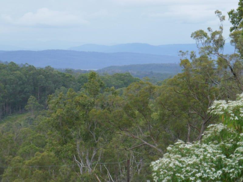 172 Mud Flat Road, Drake, NSW 2469