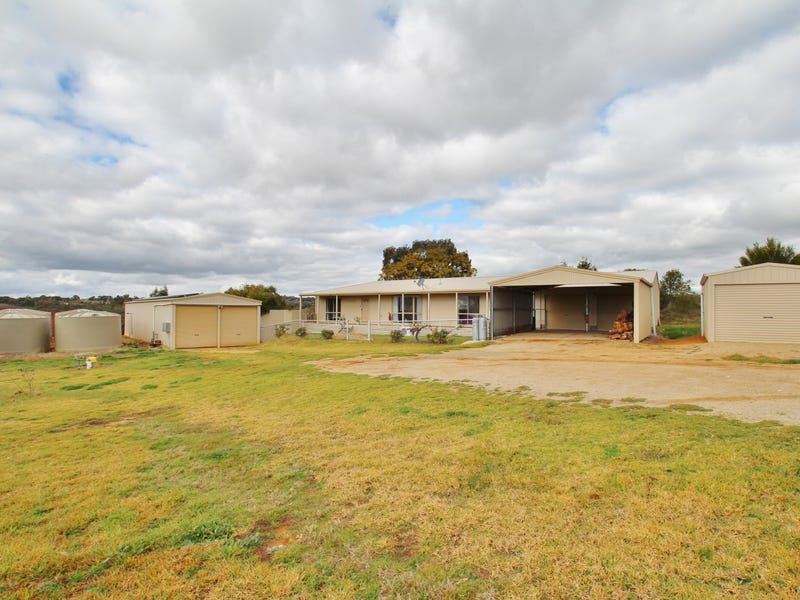 97 Tierneys Road, Young, NSW 2594