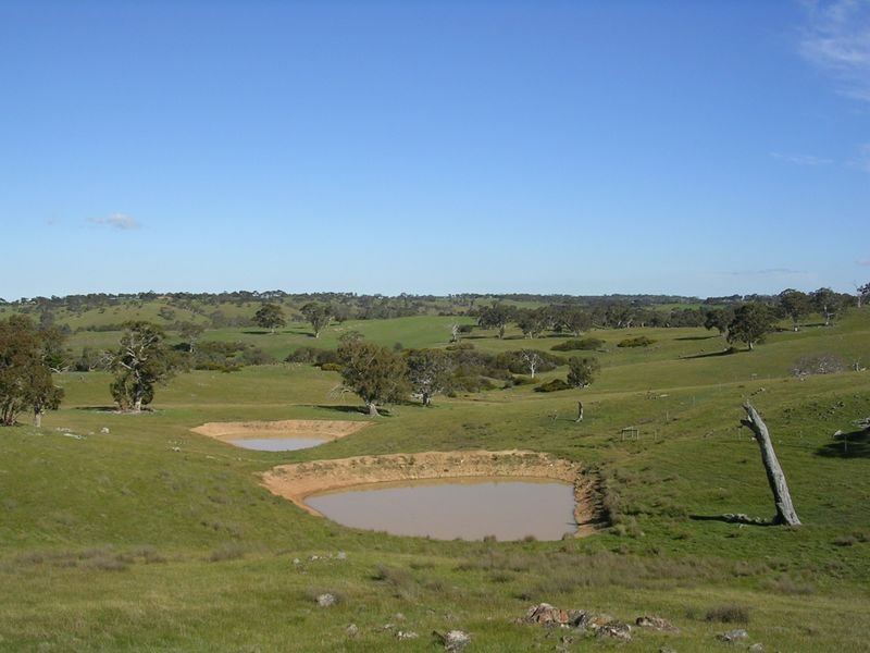 Lot 5 Wiles Fire Track, Wistow, SA 5251