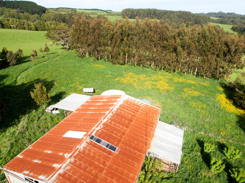 135 Old Colac Road, Beech Forest, Vic 3237