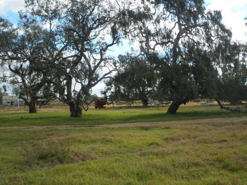 2205 Prairie Road, Tennyson, Vic 3572
