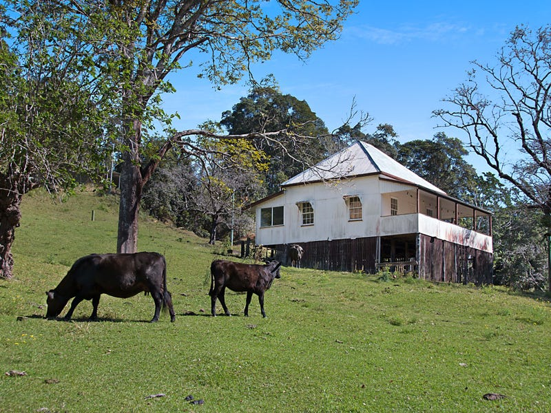 679 Urliup Road, Urliup, NSW 2484
