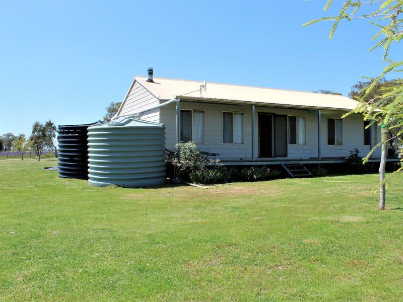 5 Holleys Lane, Gulgong, NSW 2852