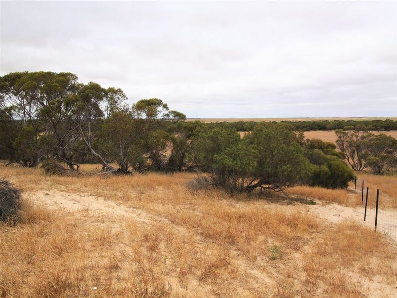 Address available on request, Lameroo, SA 5302