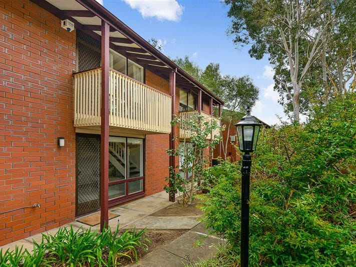 13/88 Barton Terrace, North Adelaide, SA 5006