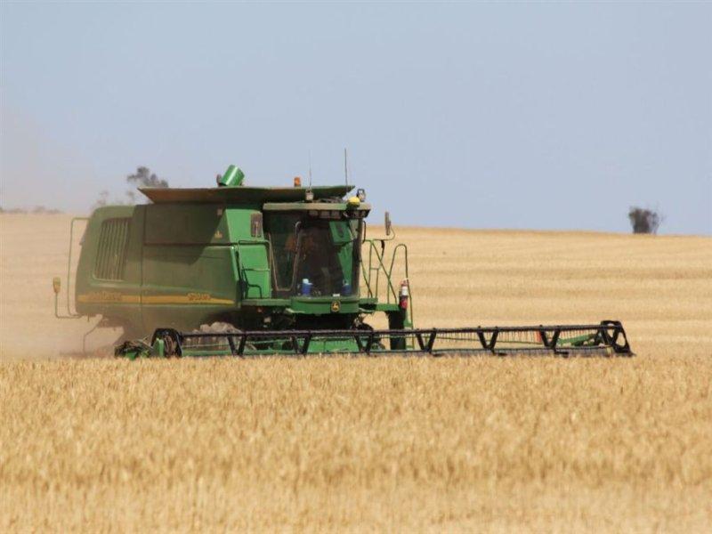 . Taranaki Farms, Wirrulla, SA 5661
