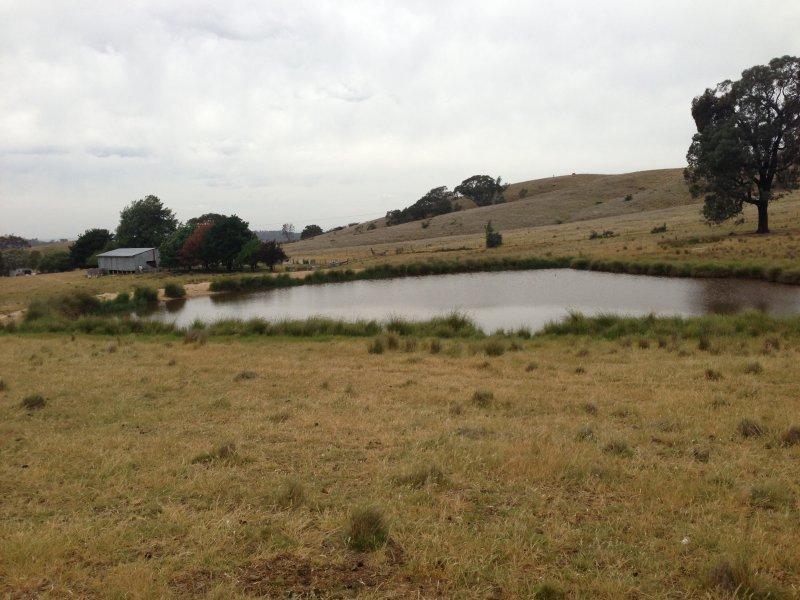 850 Pulletop Road, Big Springs, NSW 2650
