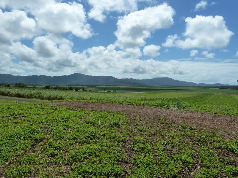 Lot 8 De Meio Drive, Lower Daintree, Qld 4873