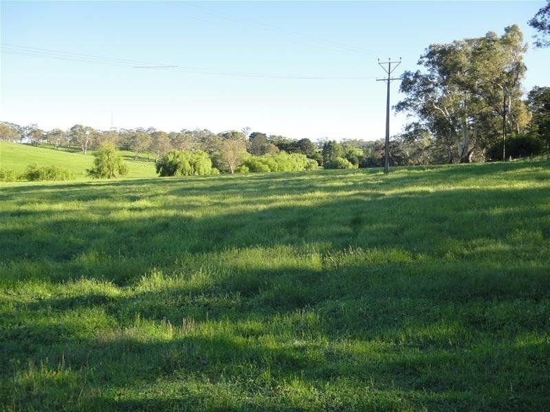 Lot 142 Watts Gully Road, Forreston, SA 5233
