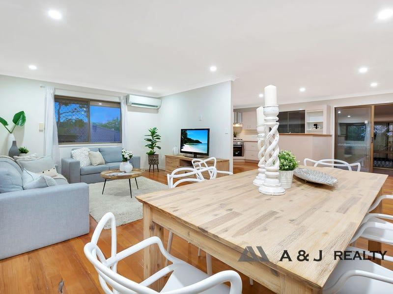 54 Terowi Street, Sunnybank Hills, Qld 4109