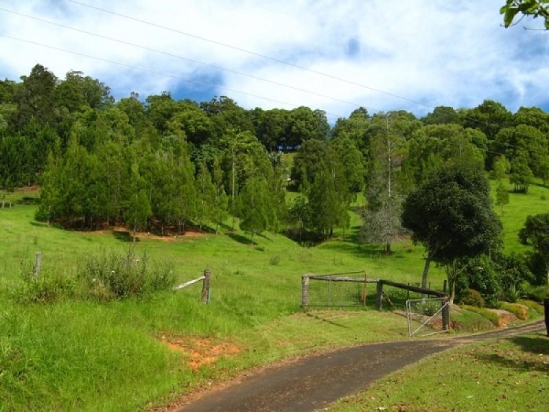 28 Glencoe Road, Murwillumbah, NSW 2484
