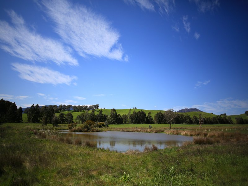 Lot 3 - 51 Yellow Creek Road, Taggerty, Vic 3714
