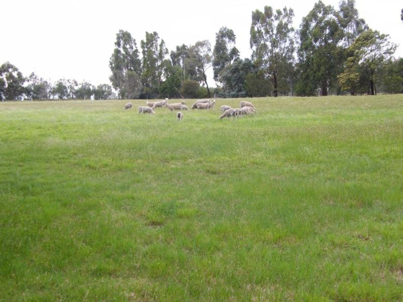 315 Lindenow South-Fernbank Road, Lindenow South, Vic 3875