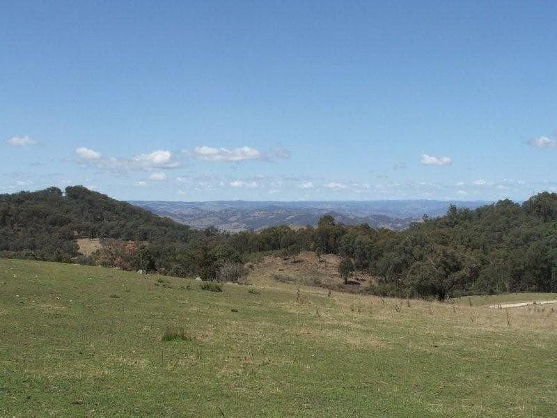 ' Wattle Gully', Bendemeer, NSW 2355