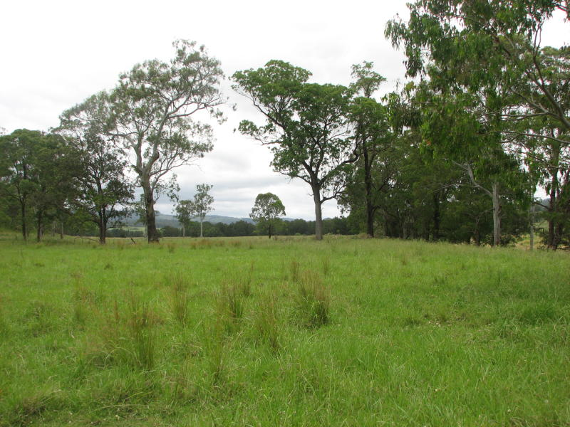 White Swamp Road, Killarney, Qld 4373