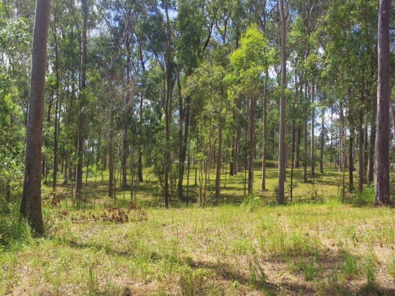 Lot 520 Wards Road, Glenwood, Qld 4570