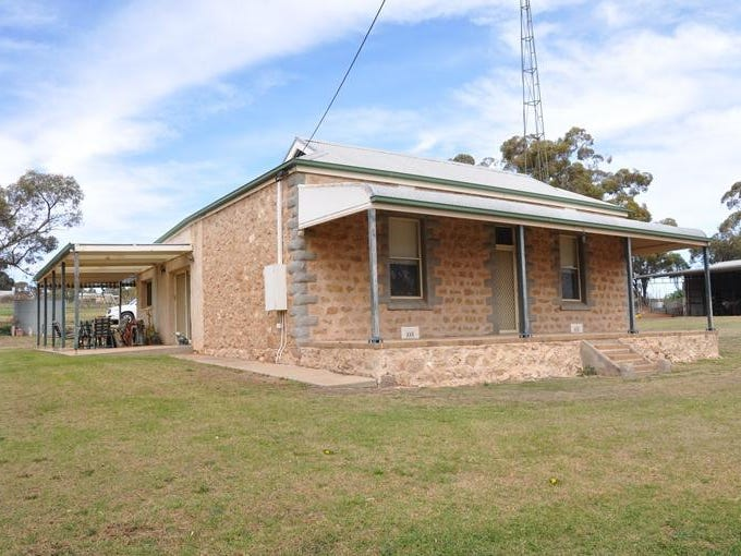 591 Mackintosh Road, Cadell, SA 5321