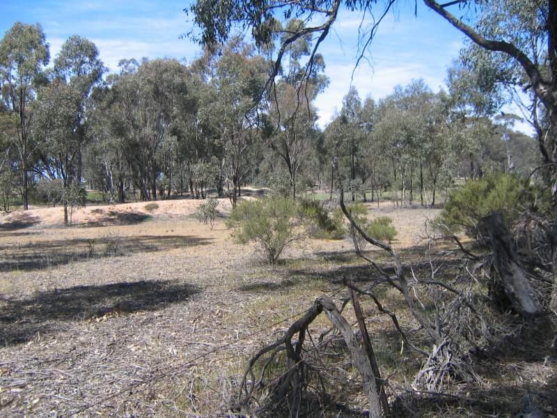 Bridgewater-Dunolly Road, Arnold, Vic 3551