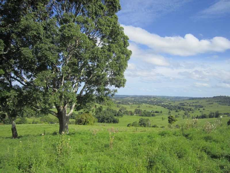 206 Cross Road, Numulgi, NSW 2480