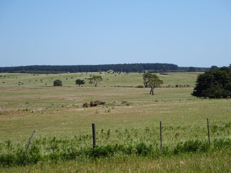 14 Tartwaup Road, Wandilo, SA 5291
