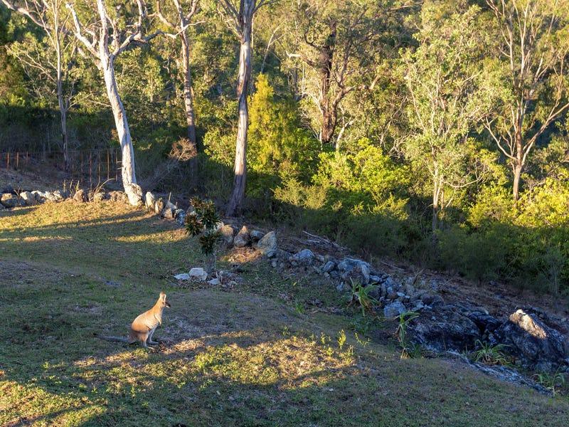 116 Bimbadeen Road, Wherrol Flat, NSW 2429
