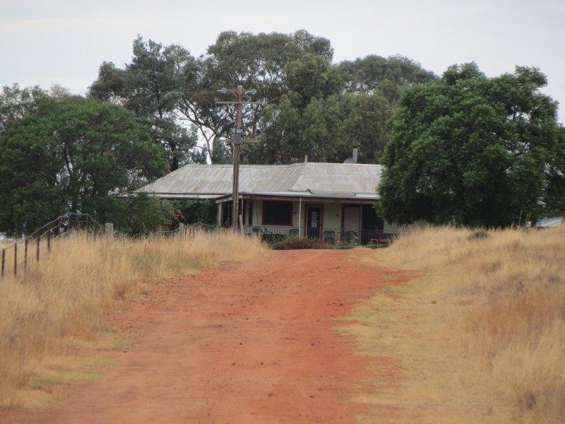 824 Boginderra rd, Narraburra, NSW 2666