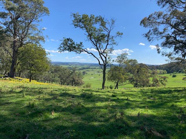 203 Horderns Road, Bowral, NSW 2576