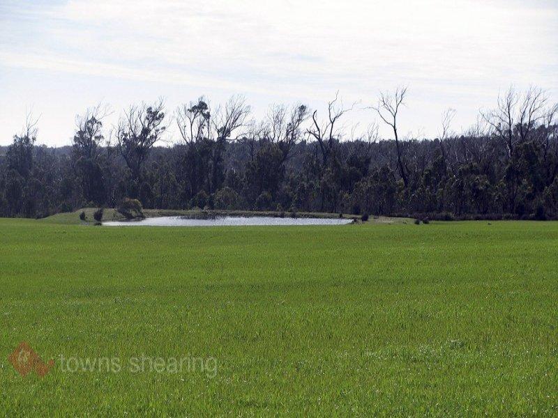 105 Saltwood Road, Pipers Brook, Tas 7254