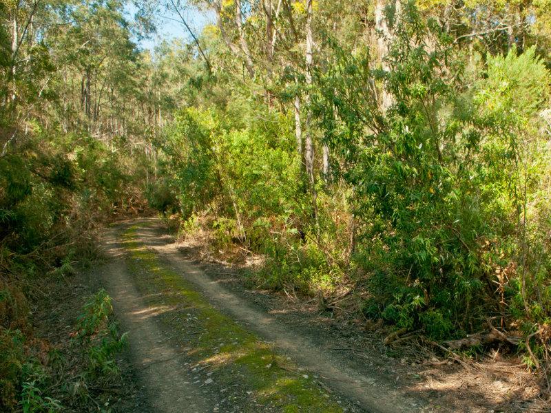 0 Crowdens Road, Western Creek, Tas 7304