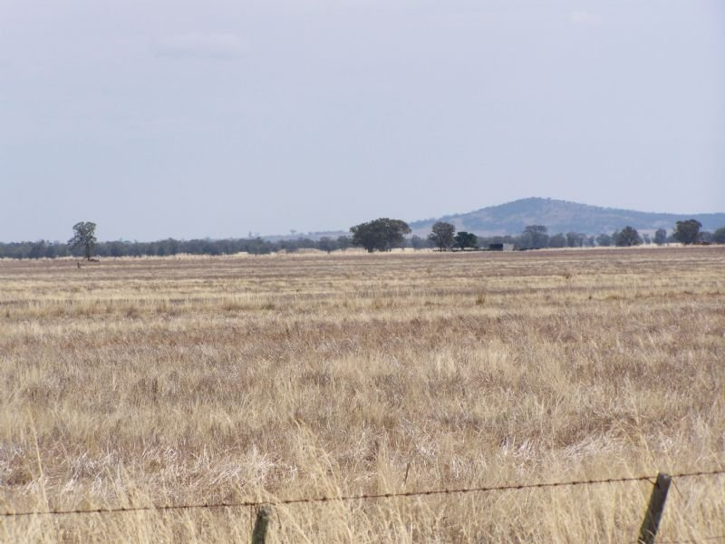 Farm Land, Sale by Tender, Dooboobetic, Vic 3478