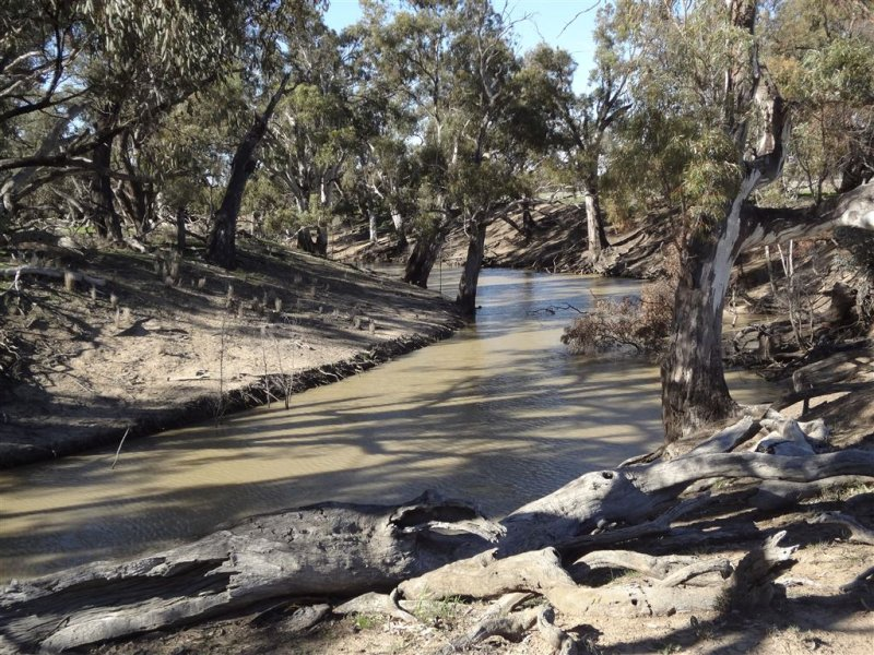 . Craigieburn, Deniliquin, NSW 2710