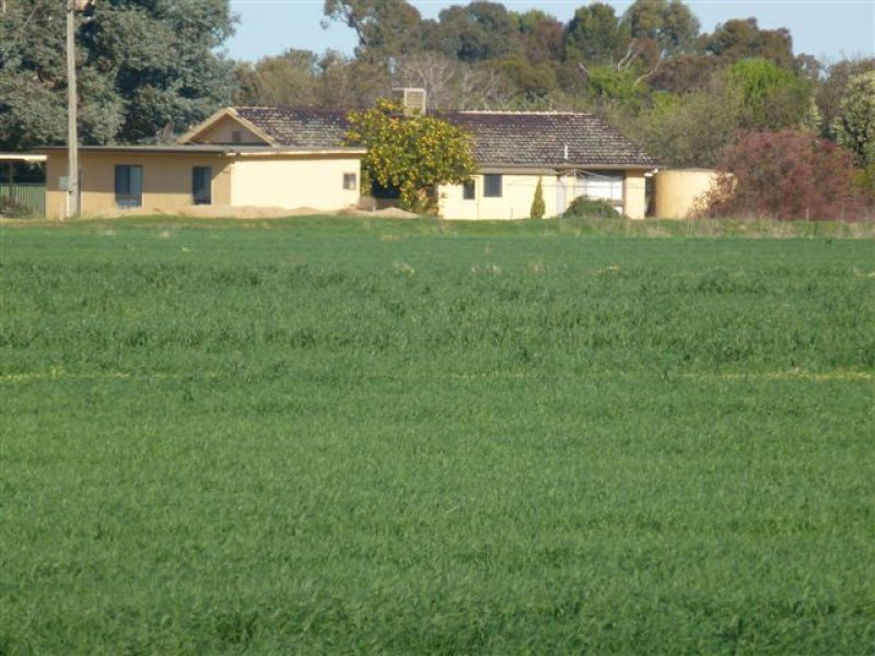 Address available on request, Coleambally, NSW 2707