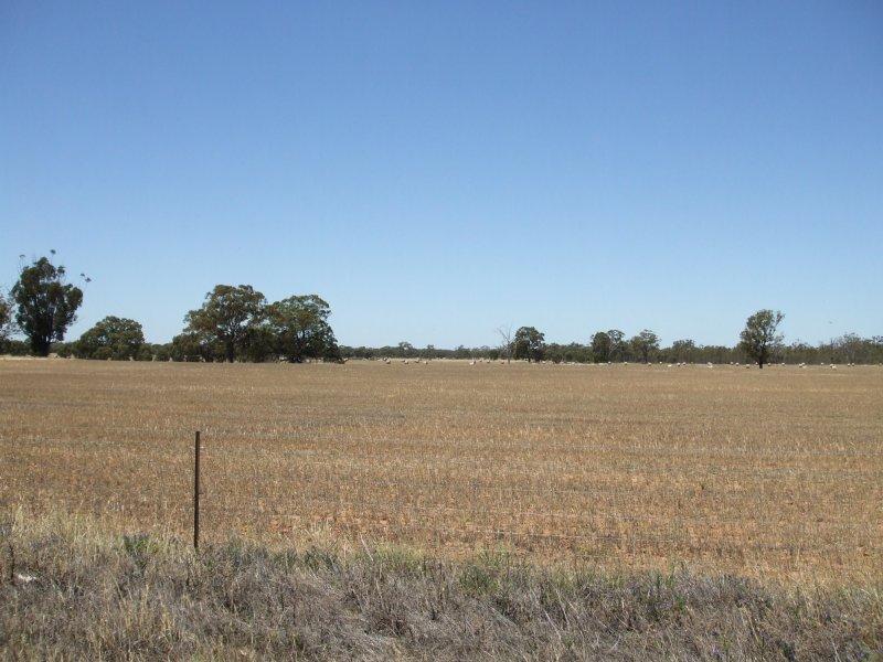 "Lot 112,114 & 71 ""Pine Grove"", Cobb Highway., Moama, NSW 2731"